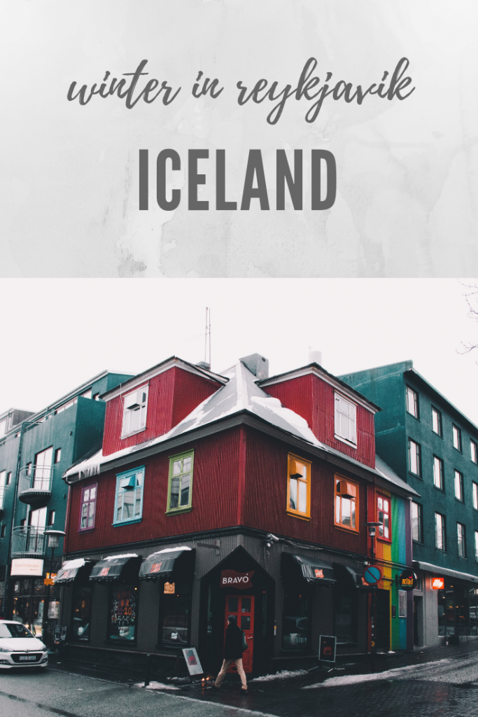 Winter In Reykjavik Diary + Tips | Iceland