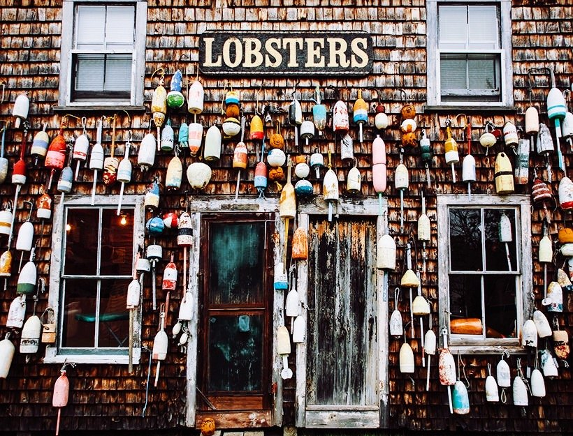 The Best Lobster Rolls in Maine   Female Travel & Lifestyle  Earth Below Girls