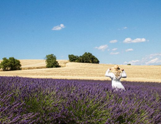 The Ultimate Provence Lavender Field Guide 2019 | France