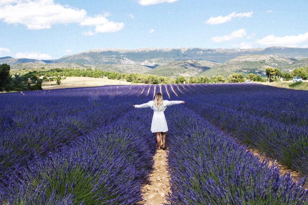 The Ultimate Provence France Lavender Field Guide 2018 Where to see Lavender in France 2018 Map Guide