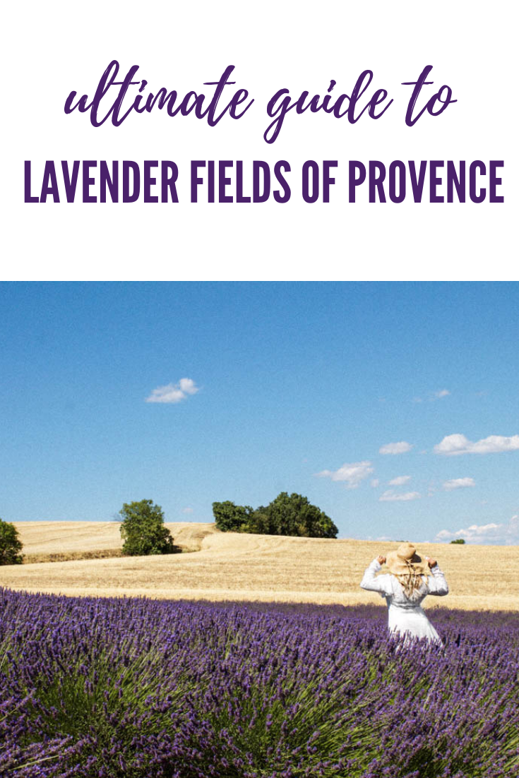 The Ultimate Provence Lavender Field Guide 2018 | France