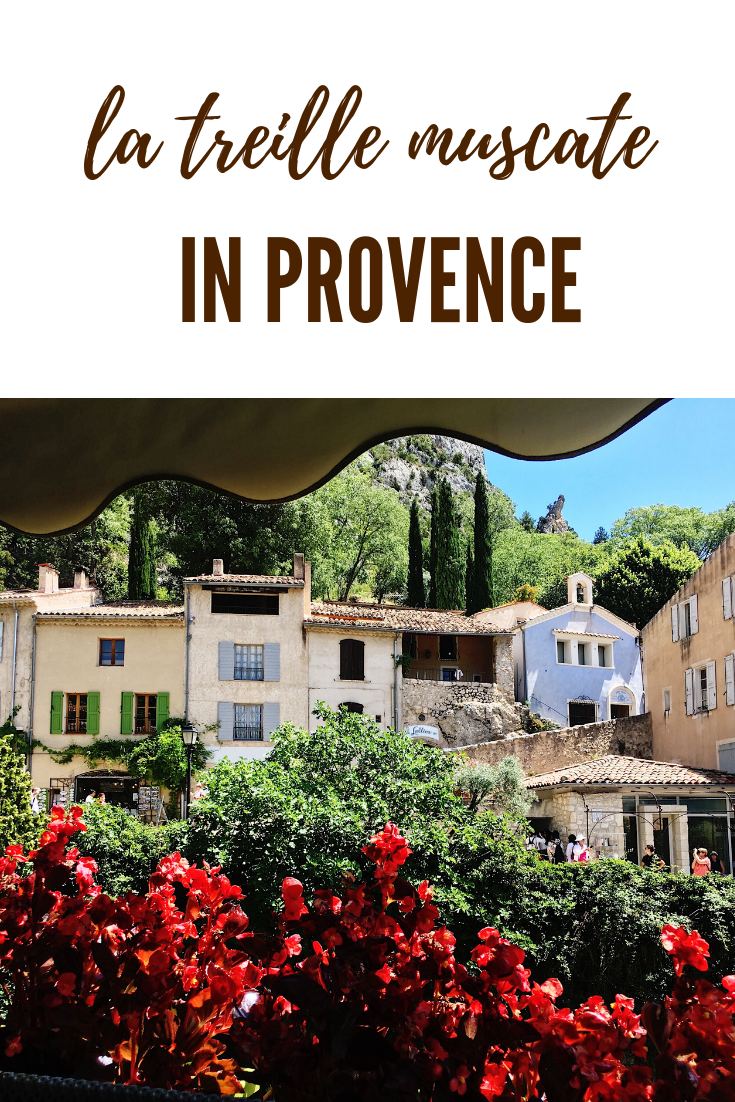 La Treille Muscate, the Best Lunch in Provence | France