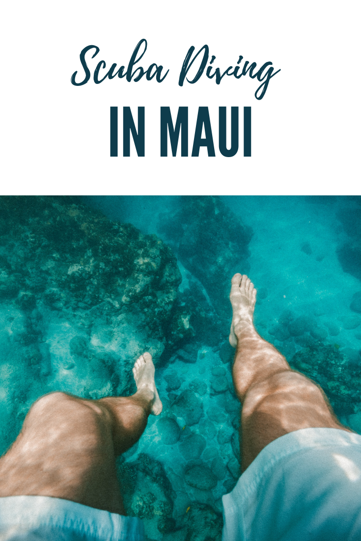 The Best Scuba Diving in Maui | USA