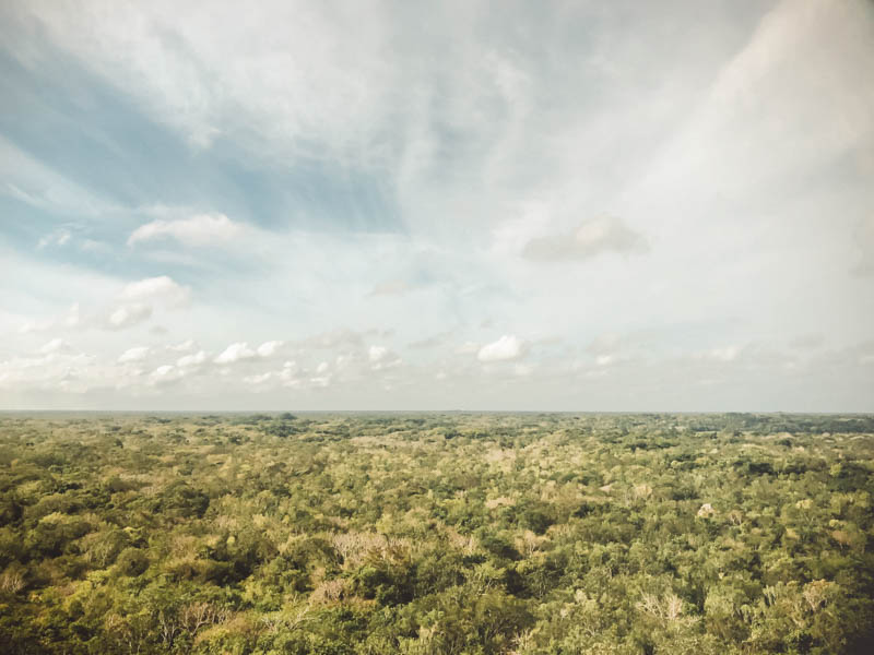 Visiting Coba Ruins Ultimate Guide| Cost Coba Ruins| How to get to Coba Ruins| Best Time to Go to Coba | Mexico