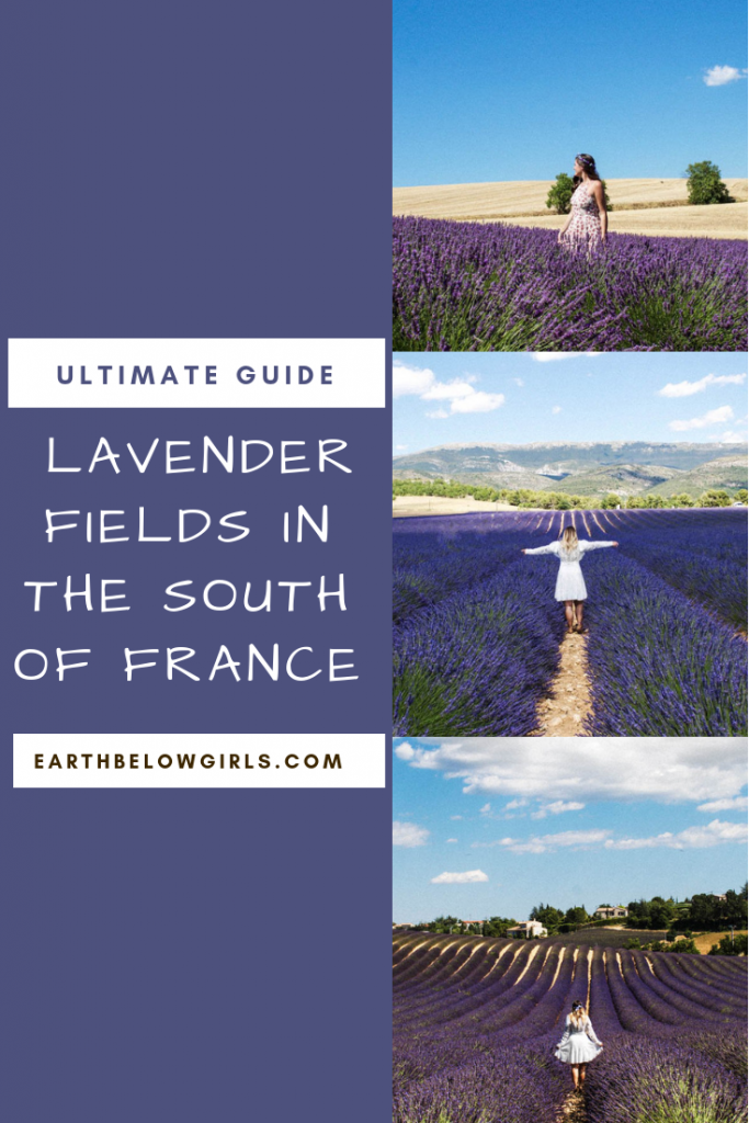How to visit Lavender fields of France