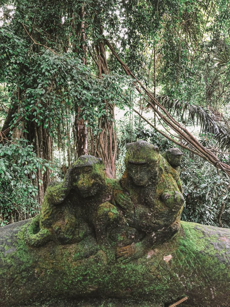 How to Visit Ubud Monkey Forest