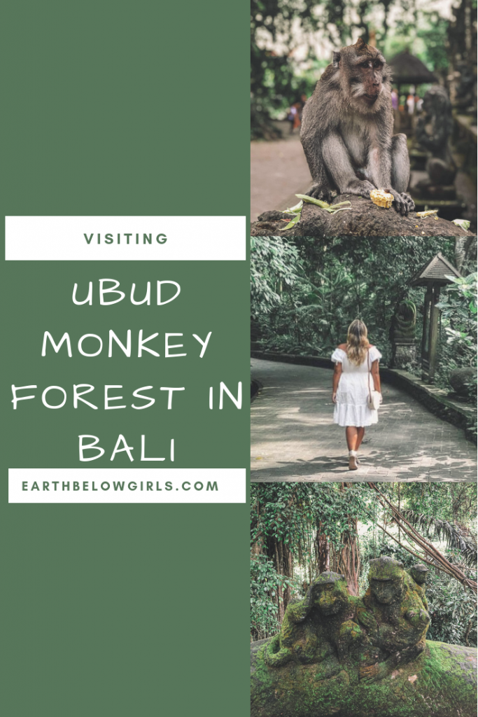 Visiting the Monkey Forest in Ubud, Bali